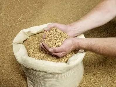 10月9日全国豆粕价格行情表,豆粕行情久经下跌后开始趋稳