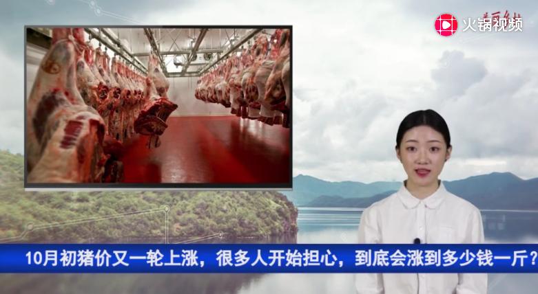 10月初猪价又一轮上涨,很多人开始担心,到底会涨到多少钱一斤