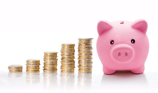 生猪抵押贷款