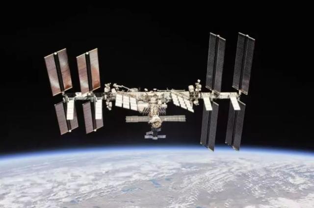 人类首次在太空中成功培育出人造肉