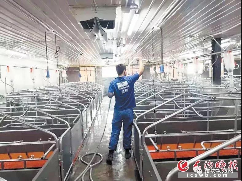 国家出台政策推动生猪规模化养殖,自动猪栏成网红