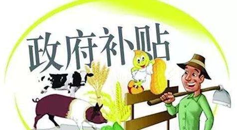 宜昌市十条优惠政策稳生猪生产 育肥猪保险额提至1500元/头