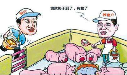 客家村镇银行定制生猪贷服务,2600万元信贷扶持养猪业发展
