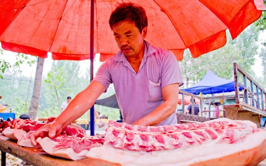 9月份兰州市场:生猪销售价格创历史新高!