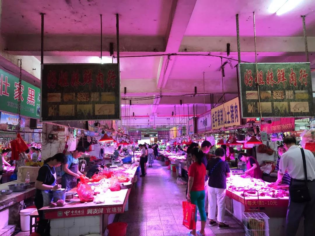 猪价飙升,养猪业或将进入一个疯狂的时代?
