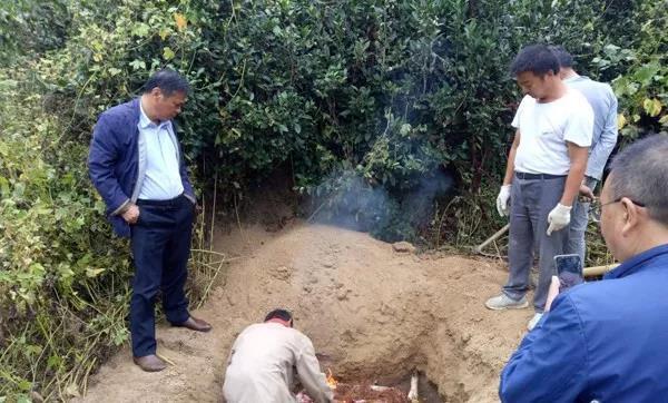焚烧后填埋,公开销毁查处的私宰猪肉87公斤!
