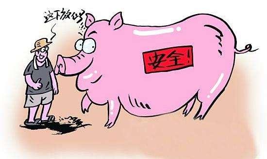 非洲猪瘟时代,你的养猪场还有坚持在做其它疫病防控吗?
