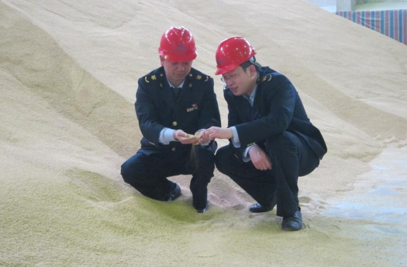 10月15日全国豆粕价格行情表,中国大豆进口量增加,大豆价格将持续低迷