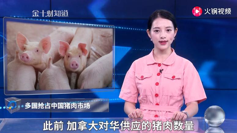 2090万!丹麦拿下中国猪肉大单,德国来华设厂,加拿大错失良机