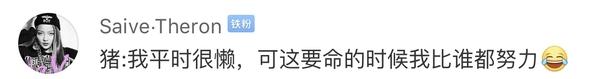 中国网友评论