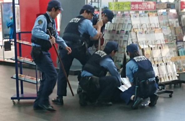 警员击毙野猪