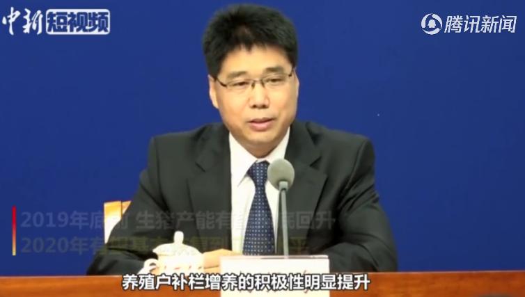 农业农村部:生猪产能有望于2020年基本恢复到正常水平