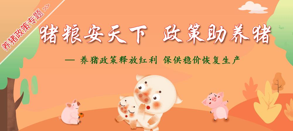 猪粮安天下,政策助养猪——养猪政策释放红利,保供稳价恢复生产
