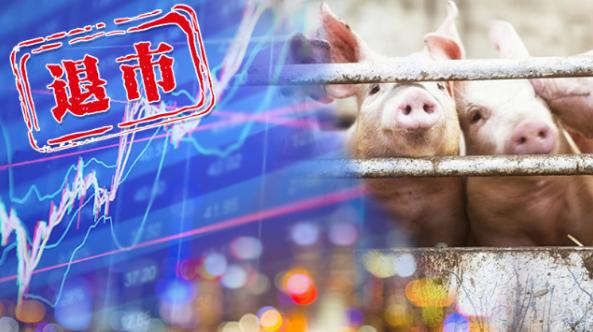 """市值缩水98%,昔日""""养猪第一股""""被摘牌,雏鹰农牧9年上市路走到尽头"""