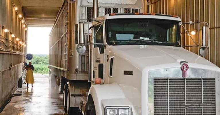 猪场生物安全的关键点-卡车洗消及干燥