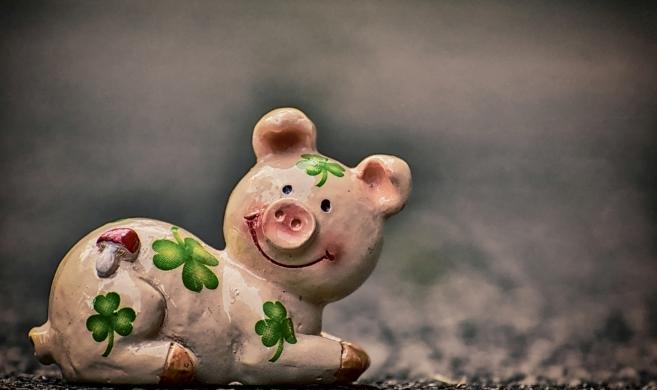 10月18日全国生猪价格外三元报价表,云南外三元生猪价格破30元大关
