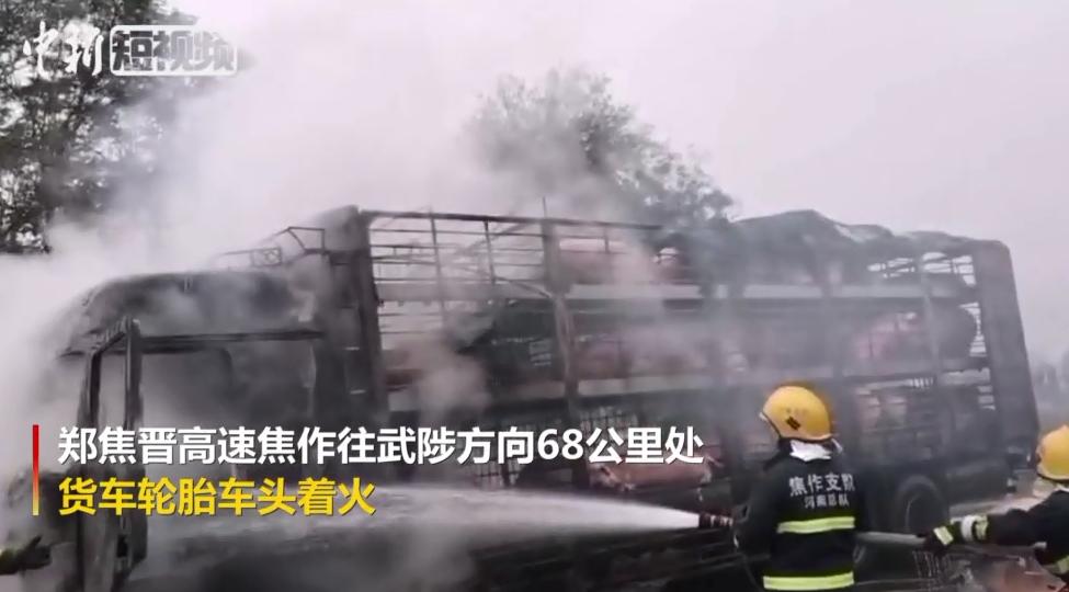 运猪货车突然起火 消防员救下一车猪