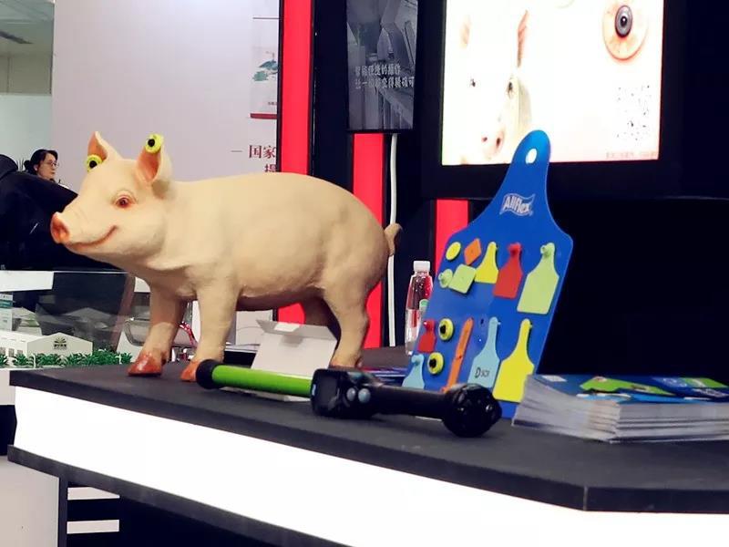 告别传统养殖,李曼大会上智慧养猪联合生态展实力吸晴