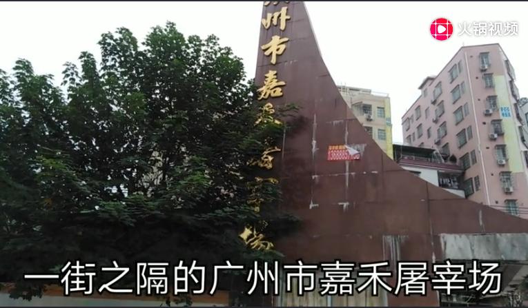 广州最大的生猪批发人去楼空,猪肉价格何时下降?