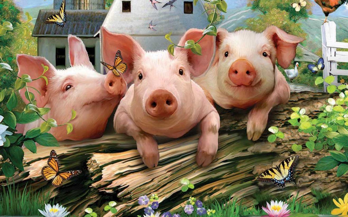 短期推出非瘟疫苗的可能性较小 猪价至少震荡上涨至2021春节前后
