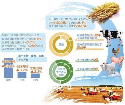 粮食增产在望,养猪政策支持力度给力,养猪户信心恢复