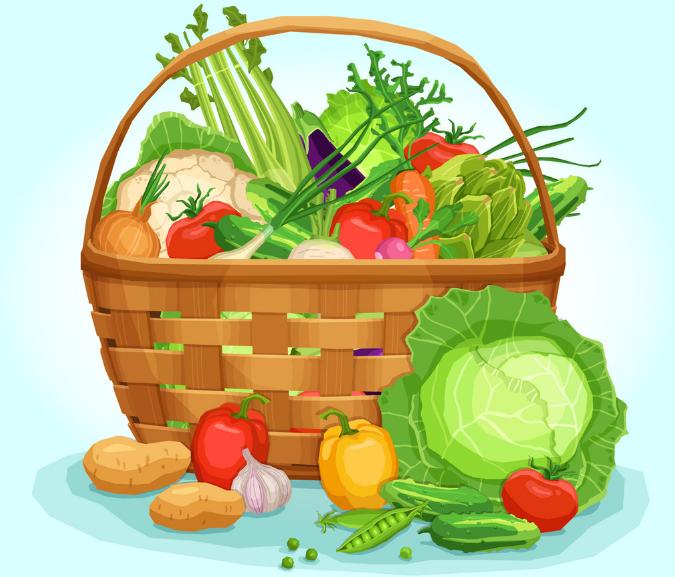 山东济宁:蔬菜价格呈季节性下降 猪肉价格高位运行