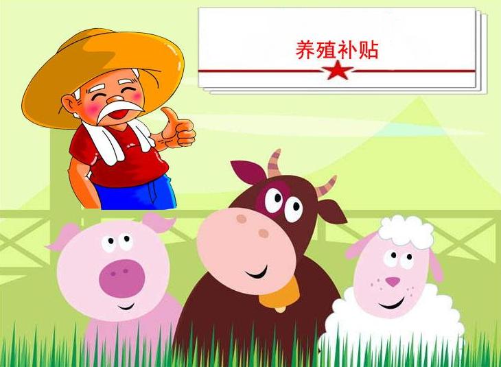 10月30日全国生猪价格,黑龙江突破历史高位,各地加大生猪养殖补贴