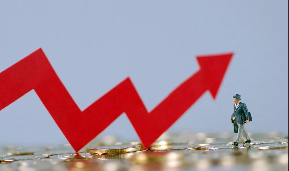养猪企业三季度业绩亮眼,后备母猪需求旺盛,四季度或创下历史新高!