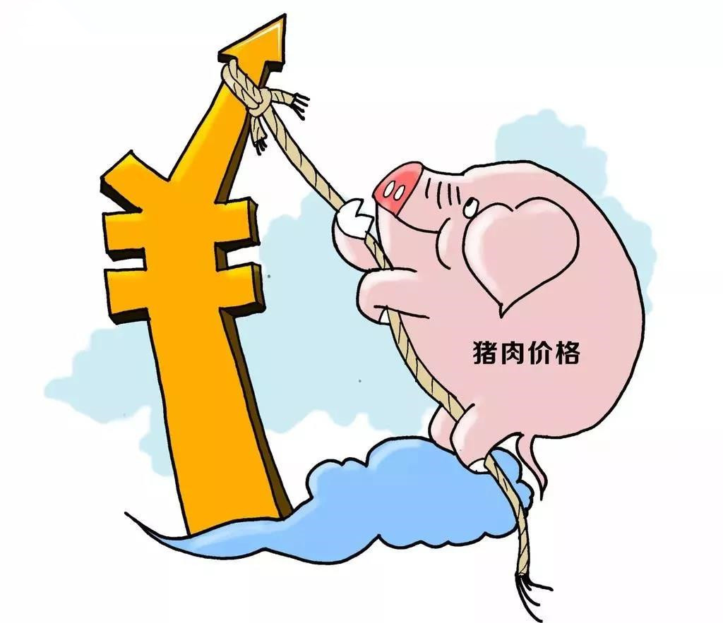 猪价创历史新高引发的深层次思考