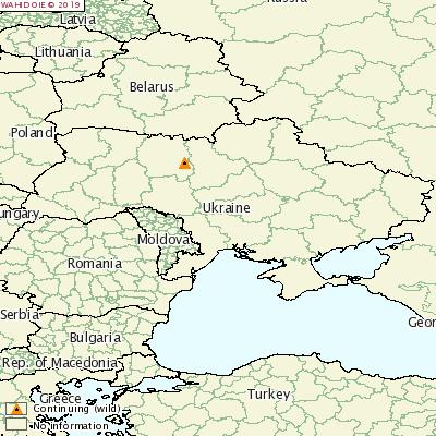 乌克兰西北部发生非洲猪瘟疫情,疫情源头未知!
