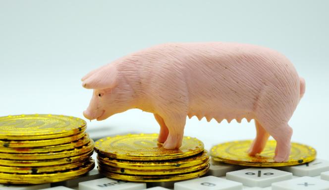 杭城本周猪肉供应量小增 批发价格略降
