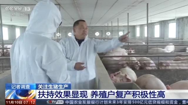 生猪生产恢复