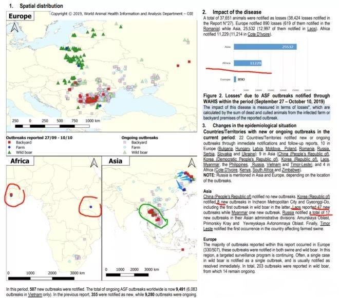 亚洲非瘟疫情