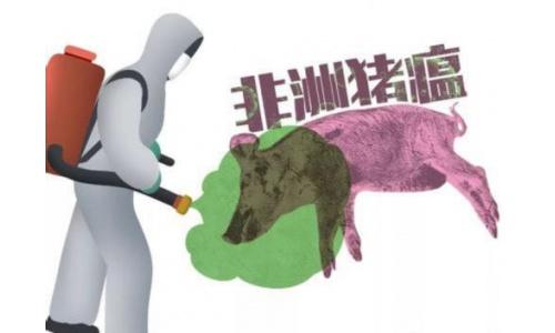 东北亚非瘟疫情爆发 百年来最大的全球生猪产业链危机已至