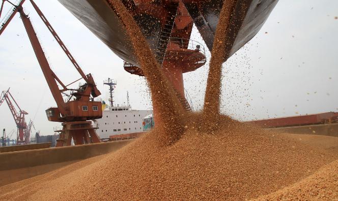 10月中国大豆进口量618.1万吨 比上月减少24.6%