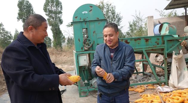 河北:生猪价格上涨激发养殖企业扩张热情