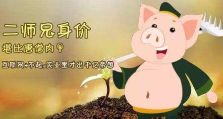"""猪肉价格连续两周下跌 """"二师兄""""身价涨到头了?"""