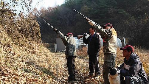 韩国抓野猪一头奖1200元,猎人留着自己吃没人上交!