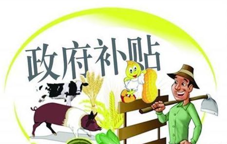 邵阳:2020年养猪场建设补助预算达1050万元 19个养猪大户有望获补助