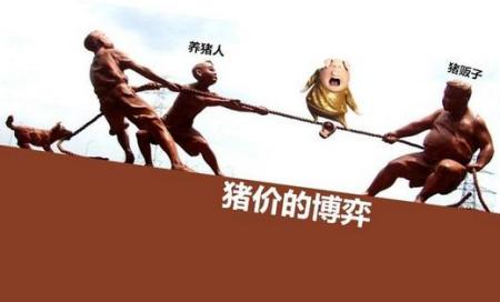 董少鹏:猪肉价格攻防战催生系统治理