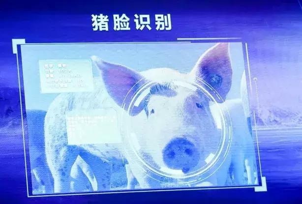 刘永好:猪脸识别等新科技是未来养猪业方向