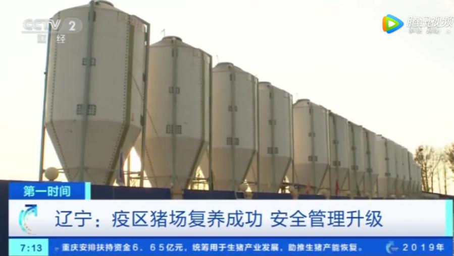 辽宁:疫区猪场复养成功 安全管理升级 一头猪赚2000元