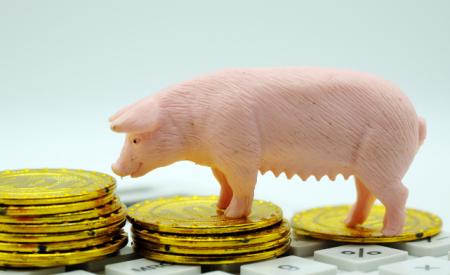 上涨信号?生猪价格止跌回稳,但2019下半年涨幅有限