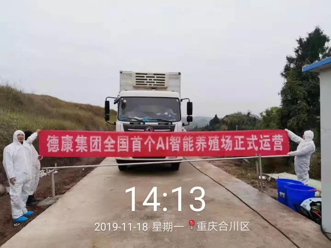 全国首家AI智慧养殖场在合川正式投入运营