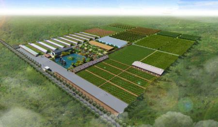西南最大规模生猪养殖场开建 建成后年出栏仔猪10万头