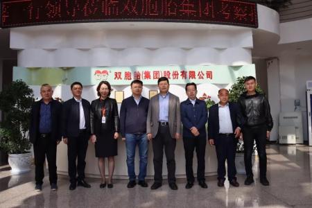 赤壁市委副书记莅临双胞胎交流60万头生猪养殖产业链项目
