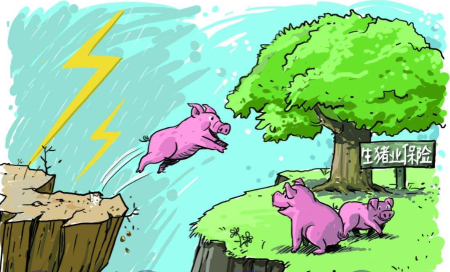 天津:农产品水稻和生猪承保覆盖率已达90%