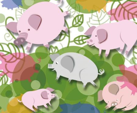 安徽生猪存栏量稳步回升 养殖户积极性正逐步恢复