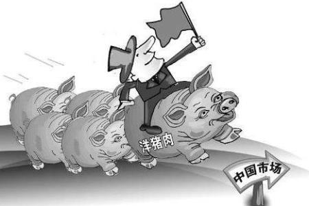 湖南增加猪肉进口缓解市场供应压力 欧洲为进口主要来源地
