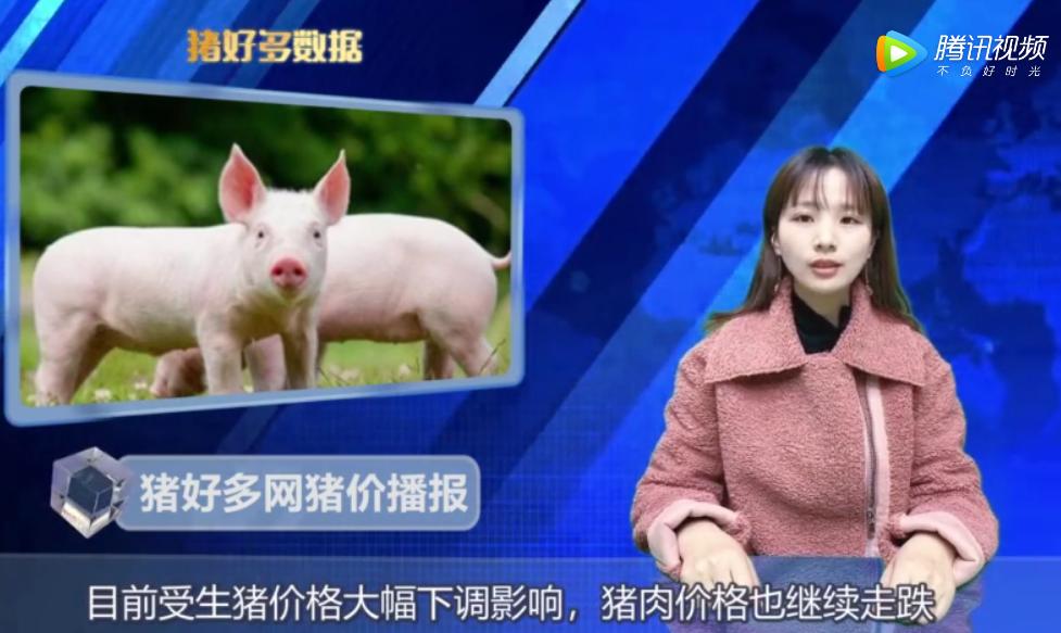 11月25日猪价行情播报:上周整体涨幅不大,需求端出现好转!